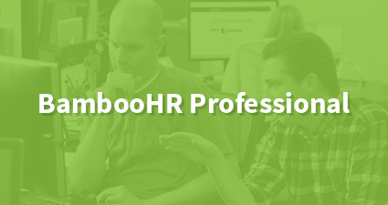 BambooHR Professional