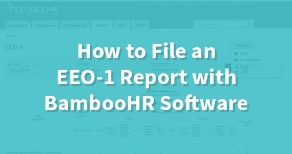 How to File an EEO-1 Report with BambooHR Software
